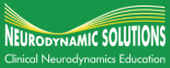 Neurodynamic Solutions